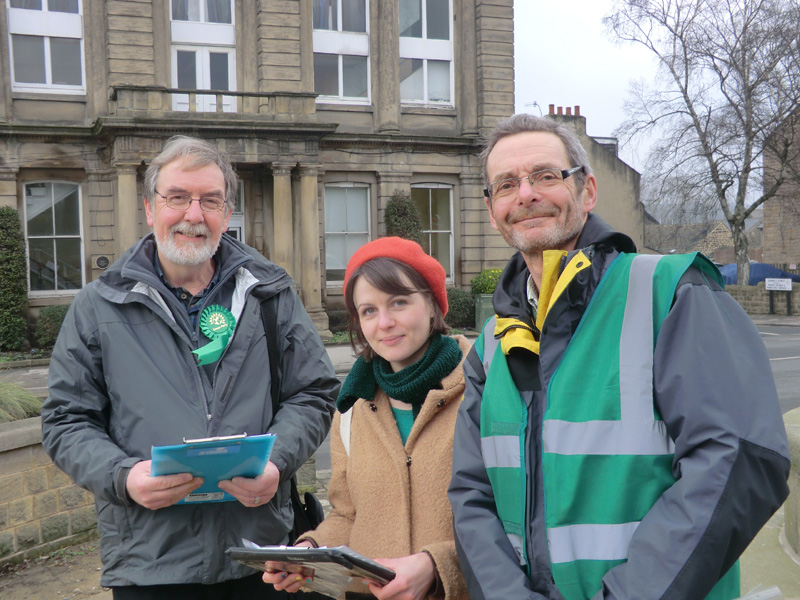 Green Party members canvassing spring 2015